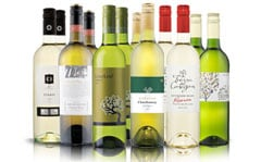 International Whites 12Btl